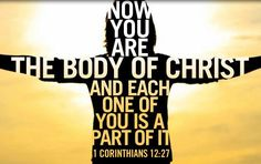 1 Corinthians 12:27 All of you together are Christ's body, and each of you is a part of it. 28 Here are some of the parts God has appointed for the church:      first are apostles,  second are prophets,  third are teachers,  then those who do miracles,  those who have the gift of healing,  those who can help others,  those who have the gift of leadership,  those who speak in unknown languages.