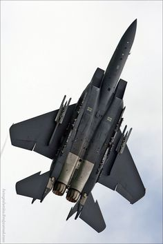 F-15 at Singapore Airshow 2012 ( OK i know it doesnt quite qualify as a ride but its F*CKING cool )