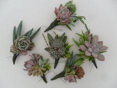 succulents boutonnieres