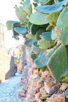 Discover Monemvasia – the medieval city of Greece – ellwed Medieval Fortress, Greece, Artists, Island, City, Plants, Greece Country, Islands, Cities