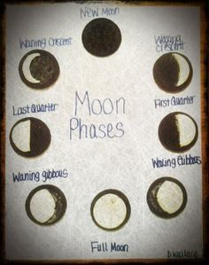 Oreo Moon Phases on Oreo Cookie Moon Phases
