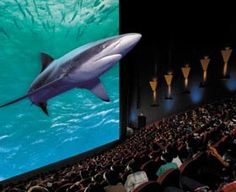 IMAX Theater at the New England Aquarium in Boston, Massachusetts - Kid-friendly Attractions Chattanooga Attractions, London Attractions, Chattanooga Aquarium, Kids Science Museum, Science For Kids, Boston With Kids, In Boston, Hologram Technology, Dubai