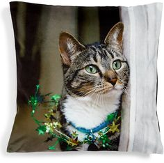Christmas Cat Cushion