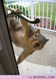 Yoohoo! I Heard That You're A Huge Nut? I Love You…