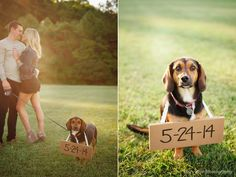 So adorable! Brown County Fall Engagement Photography by Stacy Able