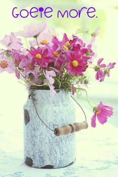 Pretty flowers in pink Cosmos Flowers, My Flower, Fresh Flowers, Flower Vases, Wild Flowers, Beautiful Flowers, Cosmos Plant, Spring Flowers, Old Milk Cans