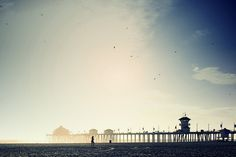 Iphono lomo (Huntington Beach CA) - Eric 5D