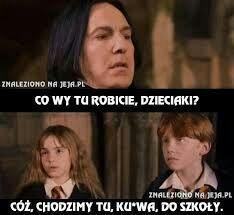 Giphy i memy co tu dużo mówić. Tom Felton Harry Potter, Harry Potter London, Harry Potter World, Harry Potter Pictures, Harry Potter Facts, Harry Potter Quotes, Life Humor, Man Humor, Wtf Funny