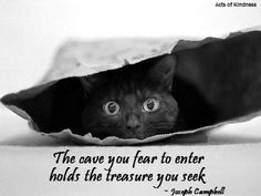 The cave you fear to enter holds the treasure you seek.    ~ Joseph Campbell
