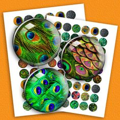 Peacock Feathers  Digital Collage Sheet  1 inch by MobyCatGraphics