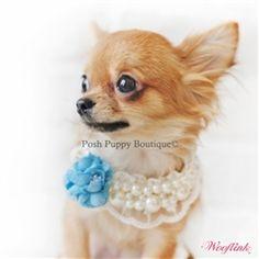 11400199b05 Spring Moments Necklace- Blue- Accessories - Necklaces Posh Puppy Boutique