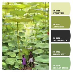 mixed greens | Paint colors from Chip It! by Sherwin-Williams