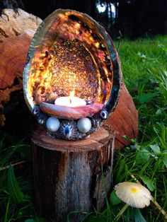 Abalone Shell Candle Holder Standing by TheFilthyBeast on Etsy Seashell Art, Seashell Crafts, Beach Crafts, Driftwood Crafts, Shell Candles, Diy Candles, Lantern Candle Holders, Candle Set, Shell Display