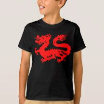 The chinese dragon is the symbol of electric energy in the universe, the power…