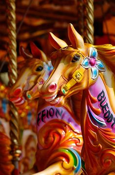 Carousel Horses - Cardiff Bay, Wales