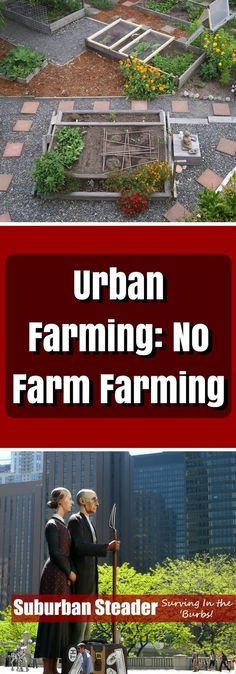 From composting to permaculture, we walk you through some urban farming tips and techniques to turn your backyard into a farm!