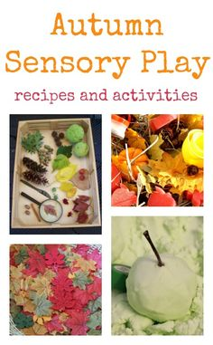 Autumn sensory play activities for toddlers and preschool, fall sensory activities
