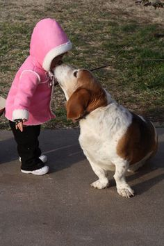 Pinner said....this photo reminds me...We had a basset cross dog named DIXIE and she cleaned 'our' boy with dog licks to the face, saving trees by not needing kleenex!