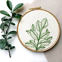 botanical plant hand embroidery hoop by tuskandtwine on Etsy