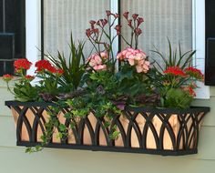 "Our Arch style of Decora wrought iron window boxes from Hooks and Lattice are a beautiful addition to any window, deck or patio. The wrought iron window box you are viewing comes with a real copper liner that will ""patina"" to a soft green with Wrought Iron Window Boxes, Metal Window Boxes, Fall Window Boxes, Window Box Flowers, Window Sill, Flower Boxes, Iron Windows, Window Planter Boxes, Planter Ideas"