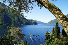 Hotel, Ascona, Pensione, Ristorante, Banchetti, Turismo