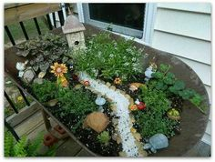 Fairy garden in old wheelbarrow