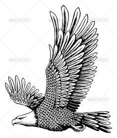 Realistic Graphic DOWNLOAD (.ai, .psd) :: http://hardcast.de/pinterest-itmid-1000083655i.html ... Bald eagle ...  bald eagle, bird, bird of prey, black, clean style, eagle, freedom, golden eagle, patriotism, power, white  ... Realistic Photo Graphic Print Obejct Business Web Elements Illustration Design Templates ... DOWNLOAD :: http://hardcast.de/pinterest-itmid-1000083655i.html