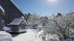 Last weekend's snow is melting fast on Nantucket -- enjoy it while you can!