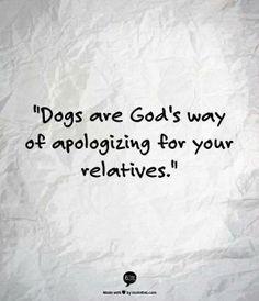 #WarriorServiceDogs #Doghumor
