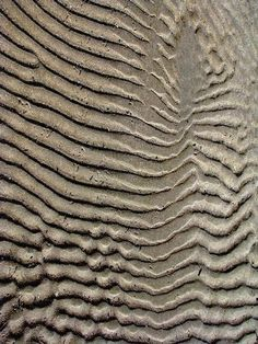 This a texture you and feel the sand within the photograph. you feel the griddy sand and lines of it. Patterns In Nature, Textures Patterns, Color Patterns, Nature Pattern, Water Patterns, Natural Forms, Natural Texture, Texture In Art, Texture Walls