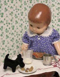 Patsy Ann's Story & Pictures Doll Toys, Baby Dolls, Effanbee Dolls, Ann Doll, Alexander Dolls, Old Dolls, Scottie Dog, Antique Toys, Vintage Dolls