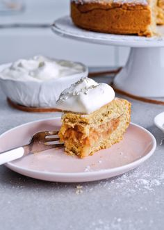 Recipe for Slovenian apple pie, which is almost a torte. Made with a sour cream, crumbly and cookie-like crust, topped with grated apples which make a very juicy filling. Easily sliced into pieces and perfect for serving to a group or potluck parties. Very easy to make. | mitzyathome.com