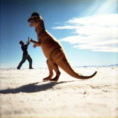 """lomographicsociety: """" Lomography Film of the Day - Fuji Superia 400 """" Forced Perspective, Lomography, Fuji, Kangaroo, Illusions, Art Photography, Awesome, Animals, Fun Things"""