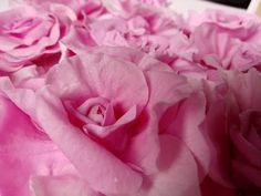 Плоская декоративная роза . МК от Риты :) Flat Rose tutorial by Rita - YouTube