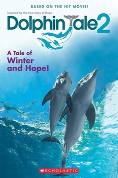 """Read """"Dolphin Tale Movie Reader"""" by Gabrielle Reyes available from Rakuten Kobo. The sequel to the heartwarming and inspirational movie Dolphin Tale! In theaters September Dolphin Tale 2 is a. Hits Movie, 2 Movie, Great Movies, New Movies, Dolphin Birthday Parties, 5th Birthday, Dolphin Tale 2, Clearwater Marine Aquarium, Baby Dolphins"""