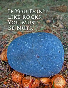 This humorous quote print is perfect for any Geologist, Gemologist, rock collector, rock lover, or earth science nut (pun intended). Rockhounds and those with nut allergies unite! This photo quote is funny, but it also makes for nice wall art and home decor.
