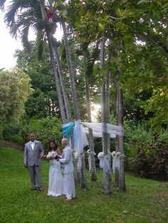 Wedding arch with a difference! Decorated palm tress in a cluster. Beautiful. #wedding #arch #palm #tress #beautiful