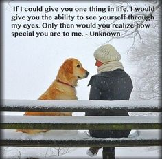 Incredibly Touching - Through a Dog's Eyes.