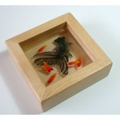 Google Image Result for http://cdn100.iofferphoto.com/img3/item/520/930/939/l_3d-diy-goldfish-resin-painting-100-hand-painting-black-eb4b.JPG