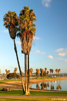 Mission Bay Park, San Diego