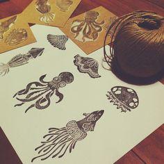 Estas medusas pican sólo la curiosidad