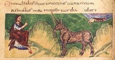 The Psalmist says: But my horn shall be exalted like that of the unicorn by petrus.agricola, via Flickr