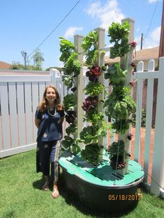 """Customer Testamonial - Kathy from Kaimuki - Primavera Aquaponics LLC """"Break-Through Organic Gardening Secret Grows You Up To 10 Times The Plants, In Half The Time, With Healthier Plants, While the Tabletop hydroponics fish tank planter aquaponics system"""