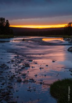 The upper Snake River, between Yellowstone and Grand Teton National Parks, flows across a wildlife-rich and lonely valley.