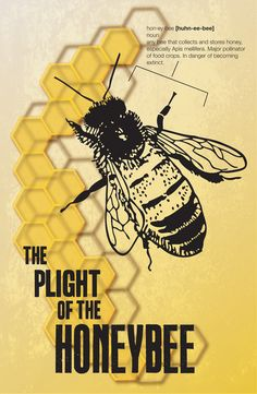 Honey Bee Awareness by Christina Baker, via Behance