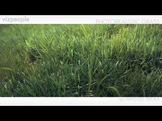 Realistic Grass - Max, V-ray, Photoshop, After Effects.