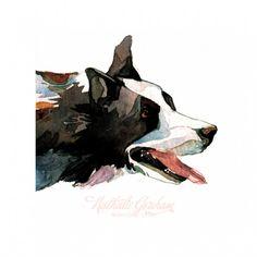 Natalie Graham - Border collie - Artists & Illustrators - Original art for sale direct from the artist