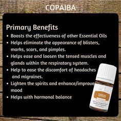 YL Copiaba Copaiba Oil, Copaiba Essential Oil, Essential Oil Uses, Essential Oils For Thyroid, Essential Oils Guide, Young Living Oils, Young Living Essential Oils, The Help, Diffuser Blends