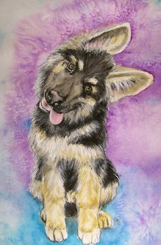 Facts On The Confident German Shepherd Dog Puppy Obedience Training, Basic Dog Training, Training Tips, German Shepherd Painting, Positive Dog Training, Dog Training Techniques, Yorkshire Terrier Puppies, German Shorthaired Pointer, German Shepherd Puppies
