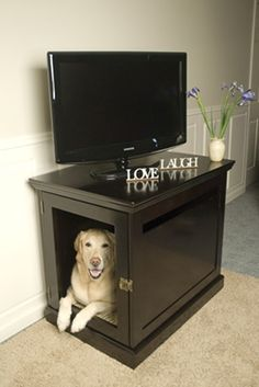 Hidden dog crate! This is perfect for Mischief! Love it